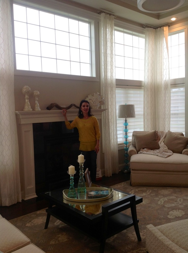 "Ahhh.....the Living Room (voted 'Best Living Room"" via Post Standard's Peoples Choice award) after shot with my Muse, Rene Settineri of Rene Designs....Neutral color scheme with pops of Tiffany Blue...embracing ambient natural light"